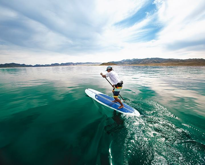 Surf Dreaming of being out on the water this summer? Check out our selection of stand up paddling gear: http://bit.ly/12c8Zxt