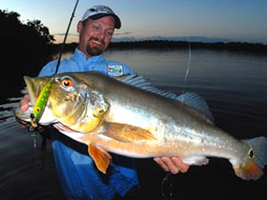 Fishing Make Mine a Topwater Lure.  Article written by Capt. Joe Richard