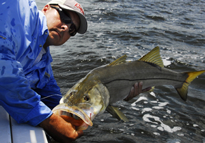 Fishing Pitching Pilchards to Snook.  Article written by Capt. Joe Richard