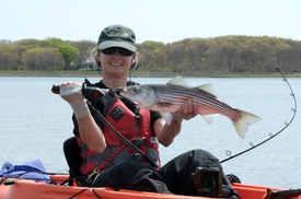 Fishing Spring Stripers on Light Tackle.  Article written by Joel Lucks