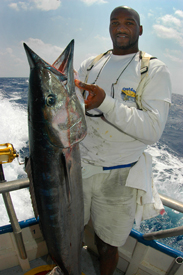 Fishing Wahoo and the Need for Speed.  Article written by Capt. Joe Richard