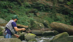 Flyfishing Discover the Joy of Small-Stream Trout.  Article written by Justin Hoffman