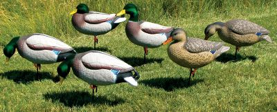 Hunting Dakotas meticulous, 17-step paint process ensures world-class coloration. Flocked drake heads boast a natural luster thats incredibly lifelike. These full-bodied, one-piece decoys are anatomically correct in every way. Six-pack includes two drake feeders, two drake uprights, one hen feeder, one hen upright and Wind Walker motion bases. Type: Mallard Duck Decoys. - $119.99