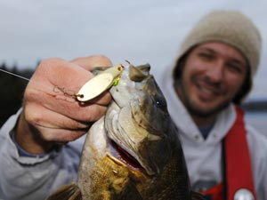 Fishing Spoon Feeding Smallmouths.  Article written by Justin Hoffman