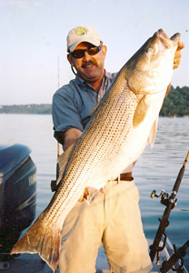 Fishing Tailrace Hybrids.  Article written by Bill Cooper