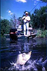 Fishing Clear-Water Crappie Tactics
