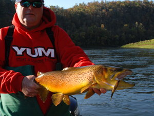 Fishing Cold Weather Tactics for White River Trout.  Article written by Bill Cooper