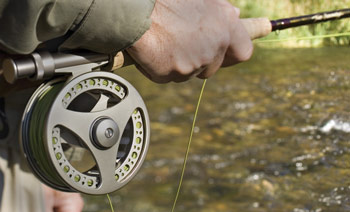 Flyfishing Choosing the Right Fly Line.