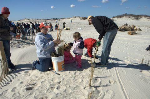 Entertainment Join Field & Stream staffers and the Friends of Island Beach State Park for a workday to remove storm debris and restore the dunes on Island Beach State Park, a 10-mile-long barrier island damaged during Hurricane Sandy, this Saturday, May 11! Volunteers
