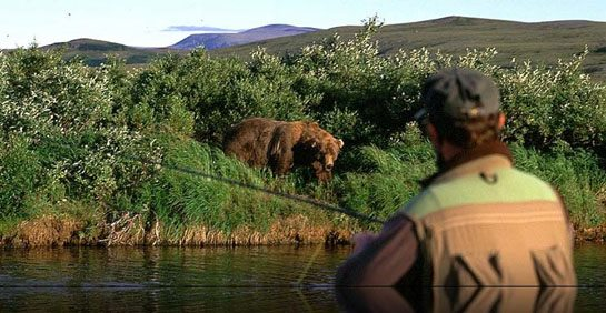 Flyfishing Check out this great bear story from Alaska! http://bit.ly/10ICBzK