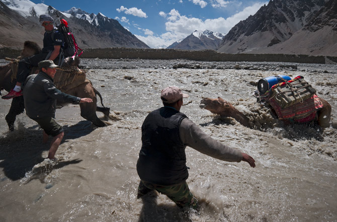 Climbing The swift current nearly swallows a two-hump Bactrian camel crossing the frigid stream that drains multiple glaciers in the Sarpo Laggo Valley of the Karakoram Range.