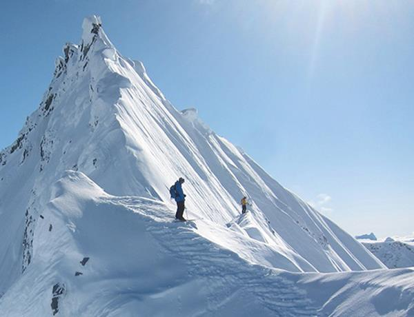 Ski Sage, snow, and spines--essential ingredients for TGR's Fantasy Camp: http://bit.ly/11qnRgt
