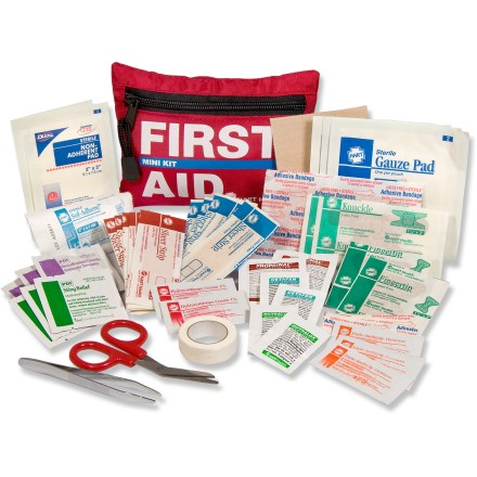 Camp and Hike The Hart Mini first aid kit offers essential medical supplies for up to 2 people going on a day hike. Contains a wide assortment of bandages and essentials for treating common complaints such as blisters and splinters. Bandages: two 2 x 3 in. non-stick pads, three 3 x 3 in. gauze pads, two 4 x 2 in. adhesive bandages, 2 fingertip, 2 knuckle, and ten 3 x 1 in. adhesive bandages. Also includes one 4 x 3 in. moleskin sheet, 4 in. splinter forceps, 4.5 in. bandage scissors, 4.1 yds x 2 in. gauze roll and 0.5 in. x 10 yds. athletic tape. Medications include 2 Propinal(R), 3 Cetafen Extra(R), 2 Nutralox(R), 3 antibiotic cream and 3 hydrocortisone cream. 2 sting relief wipes and 3 PDI(R) Antiseptic Towelettes are included for cleaning bug bites, stings and wounds. All items are contained in compact, lightweight kit that easily fits in jacket or pack pocket. Special buy. - $7.73