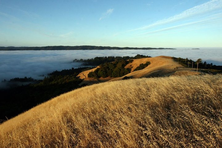Camp and Hike The REI Blog discovers 340 miles of scenic beauty near San Francisco Bay.  Have you hiked the Bay Area Ridge Trail? http://bit.ly/13VwblE Photo:  Midpeninsula Regional Open Space District
