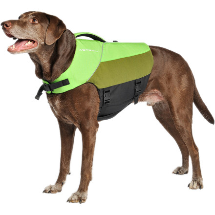 Kayak and Canoe If your pooch has a penchant for leaping into fast-moving waters, give yourself some peace of mind with the Astral Buoyancy Bird Dog Life Jacket. The ergonomic design allows Fido to paddle without restriction, and the tough Cordura shell fabric is built to withstand overgrown trails and thorny riverside brambles. - $49.90