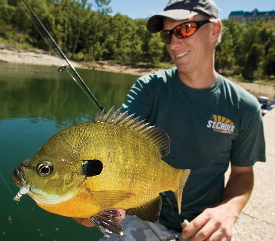 Fishing Fishing Tips: Use Icefishing Gear for Early-Summer Bluegills.  Article by Mark Strand posted may 14, 2013