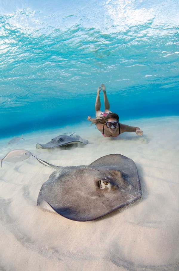 Scuba Kaitlin Debrabandere enjoys a private dawn snorkel at Stingray Sandbar