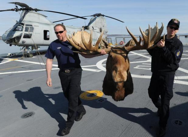Hunting Moose Mount Gets Place on Navy's Newest Warship.  Article by CJ Lotz posted May 8, 2013