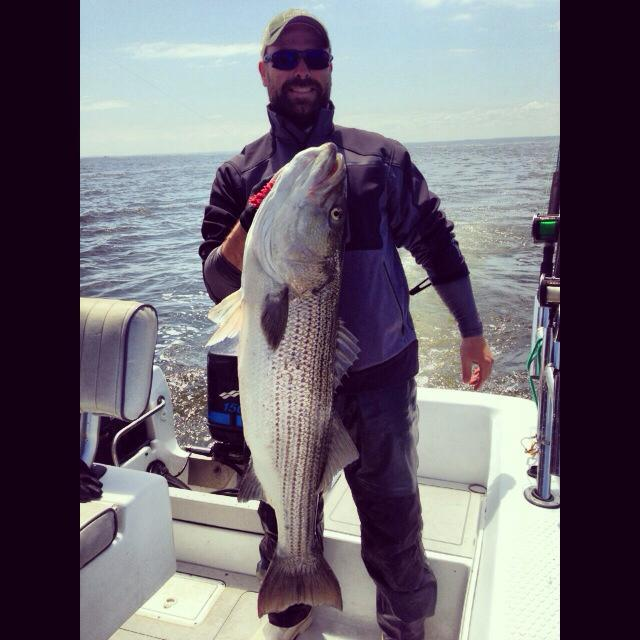 Fishing WOS member Travis sent in the some awesome photos from a 6-day trip to the Chesapeake. Check out this 35 lb. striper!  See more photos and read about Travis' trip at the WOS Blog here: http://bit.ly/13iwwfh