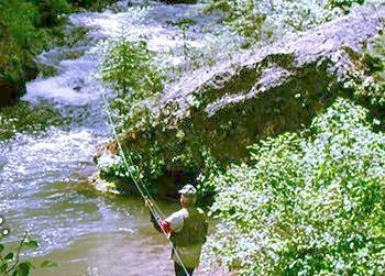 Flyfishing Wyoming High Country - Big Horn Mountain hunting and fishing