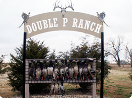 Hunting Hunting at Double P Ranch in South Dakota includes ducks, geese, pheasant and whitetail deer   651.357.2764
