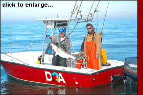 Fishing D.O.A. Charters on the Outer Banks of North Carolina  We specialize in light tackle fishing. 252.202.5565