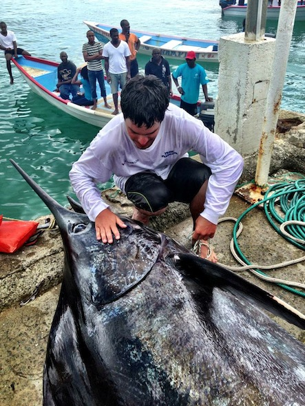 Fishing Giant blue marlin landed off Trinidad and Tobago - At 1,006 pounds, billfish is a local record and earns anglers a new car.  Article by Pete Thomas posted May 13, 2013