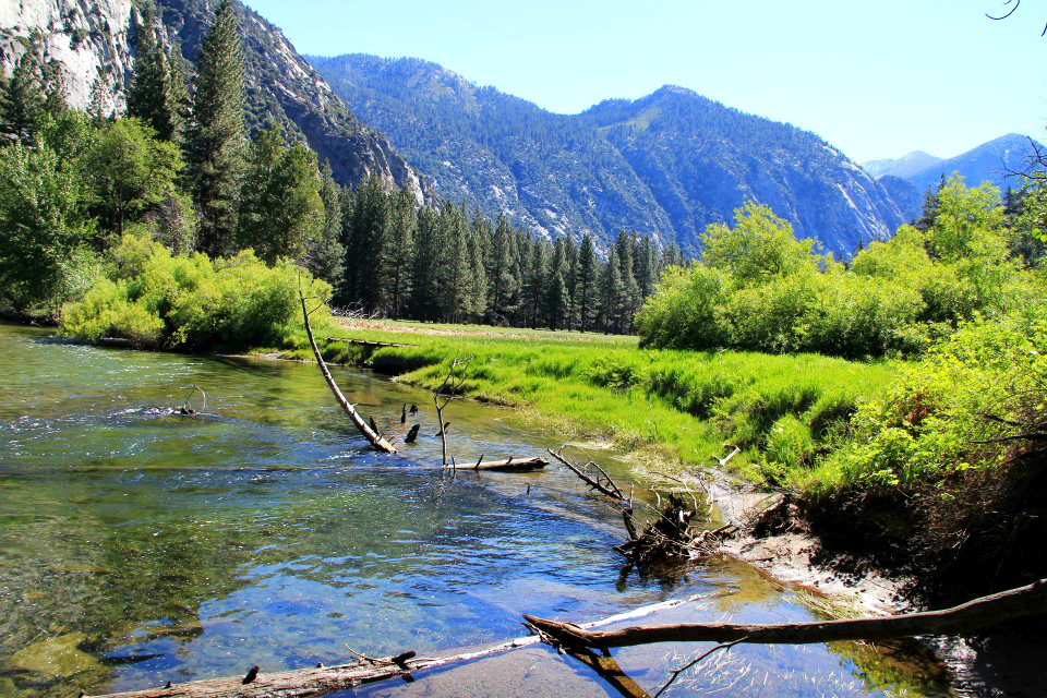 Camp and Hike Zumwalt Meadow is a peaceful oasis for Kings Canyon visitors. Article by Johnie Gall