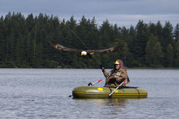 Fishing An eagle flies over fisherman Bruce Huntley.