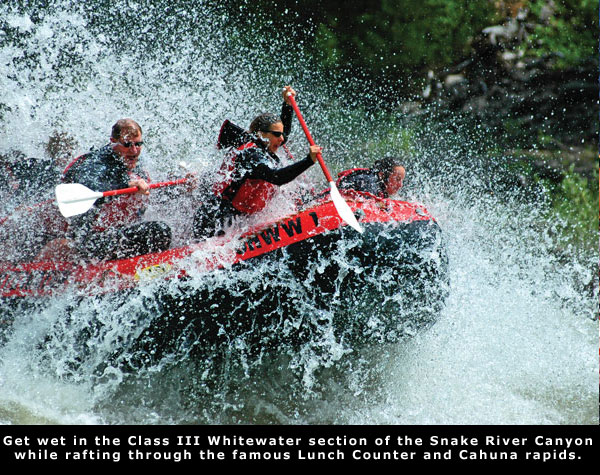 Wake Whitewater rafting on the Snake river with Jackson Hole Whitewater.  Arrange you trip @ jhww.com