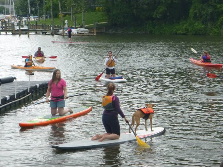 Kayak and Canoe our furry little friends can SUP too!