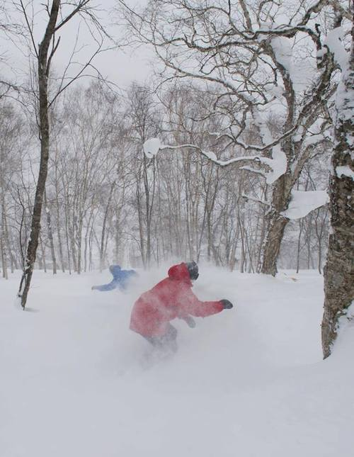 Snowboard Miss these days yet? 