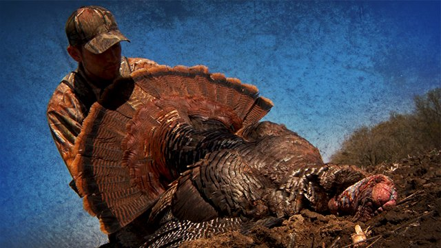 Hunting On a scale of 1 to 10 (10 being the best), how would you rate the 2013 spring turkey season?