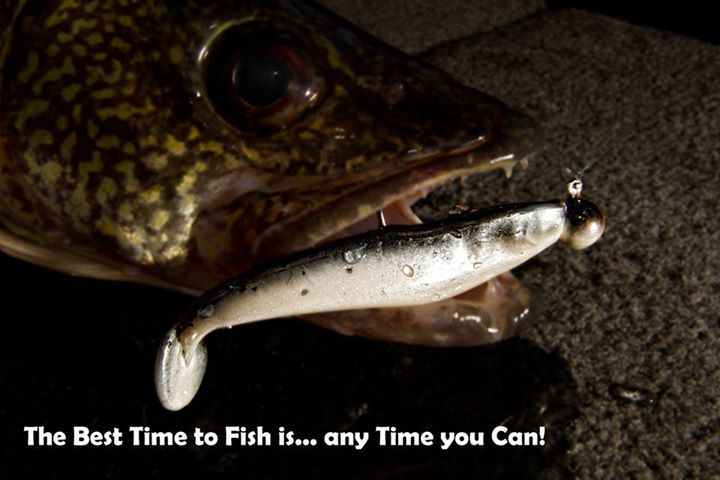 Fishing Like and Share if you agree!