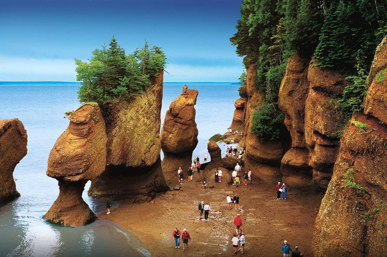 Camp and Hike The Hopewell Rocks Ocean Tidal Exploration Site in New Brunswick.