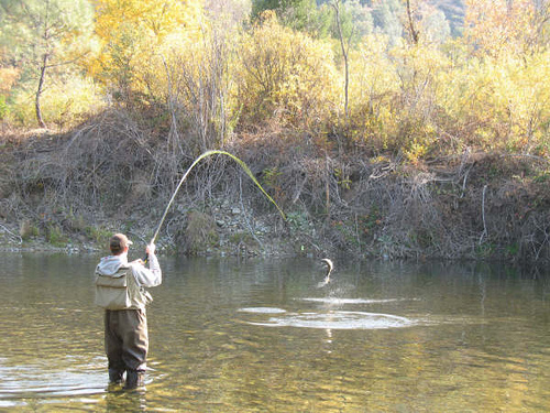 Flyfishing Fly fishing- Steelhead jumper