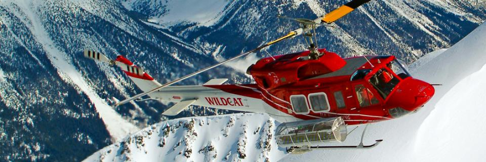 Snowboard With nearly one million acres of terrain, over 375 mapped runs, and an average annual snowfall of 14-18 metres, every day offers a new adventure.  Check out at: tlhheliskiing.com