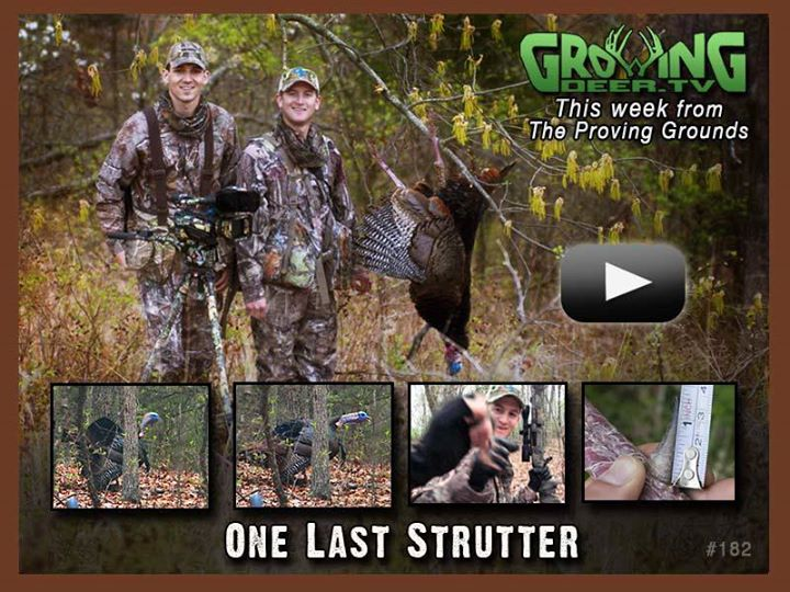 "Hunting Click ""Like"" if you LOVE longbeards and tall-tined bucks!