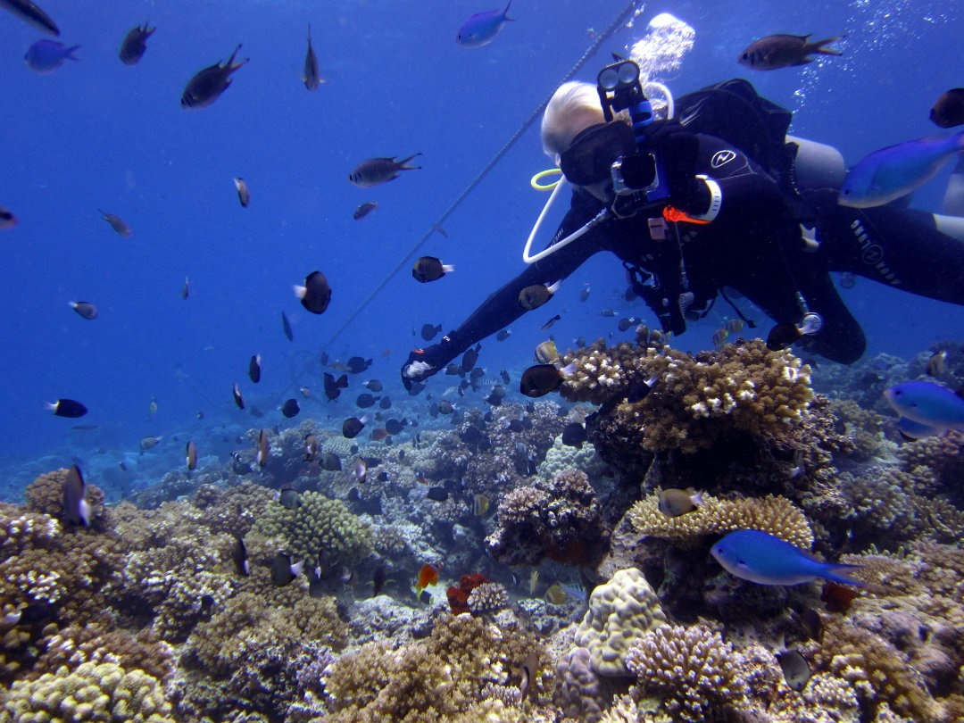 Scuba Fiji Diving ROCKS!!!!!!!
