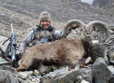 Hunting BLUE SHEEP IN HIMALAYAN MOUNTAINS