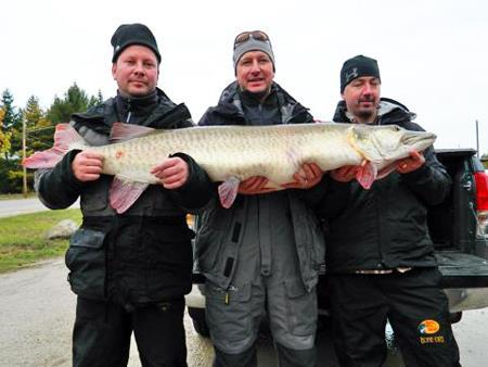 Fishing Field & Stream