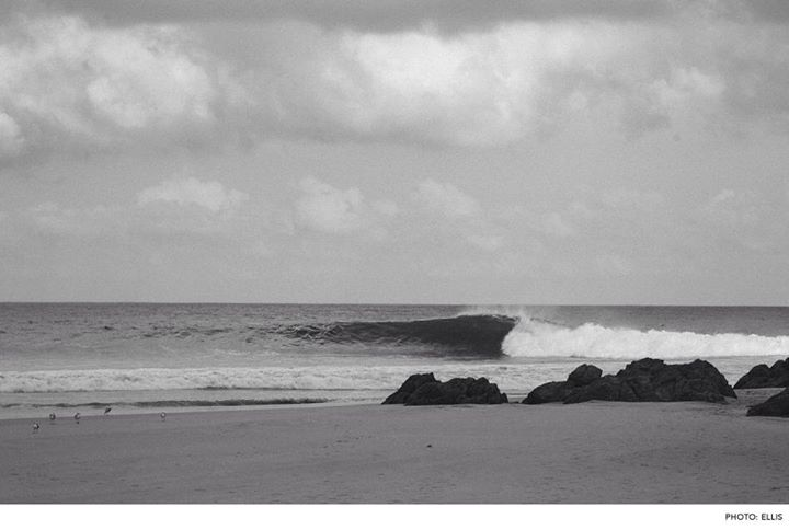 Surf Mexico. Photo: Ellis