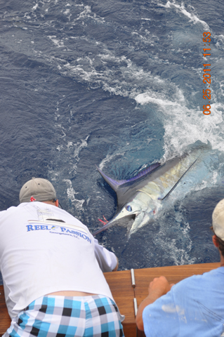 Fishing Aboard the Real Passion fishing charter out of Charleston SC.  Visit them at www.realpassionsportfishing.com