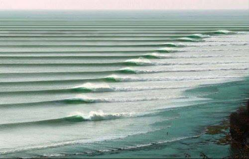 Surf Happy Saturday Everyone! We hope your day looks something like this