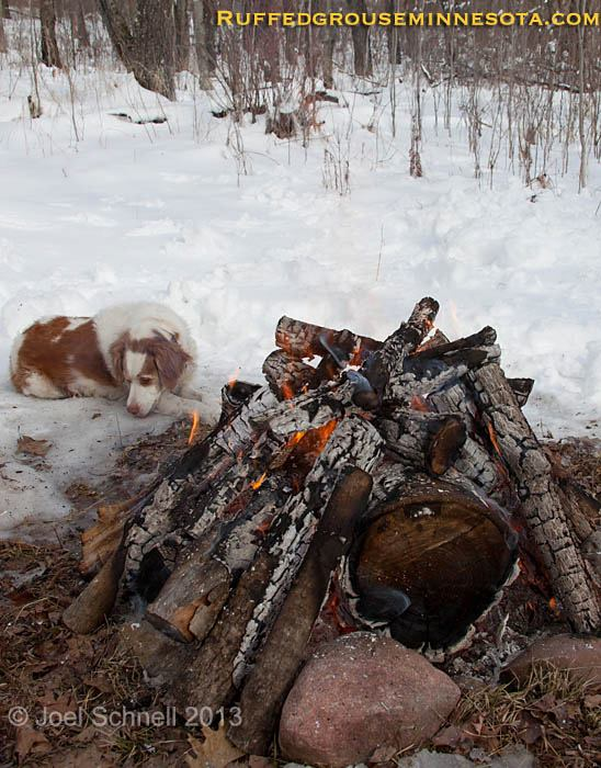 Entertainment Hanging out with Maggie around the fire, still lots of snow around the grouse camp, good thing she still has her winter coat on