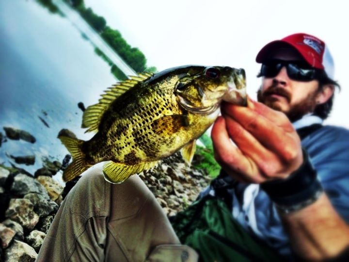 Fishing Rockin bass, in season! Rockbassassins