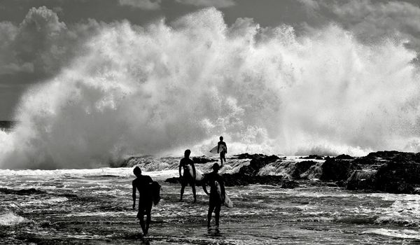 Surf Surfers walk toward waves crashing