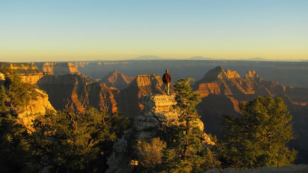 Camp and Hike Picture of a man looking out over the Grand Canyon at sunset