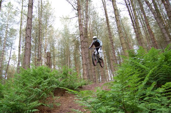 MTB Airborne rider in the woods.