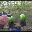 .50 AE Desert Eagle vs Watermelons